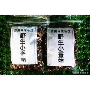【广东省内顺丰包邮】【西藏特产】西藏野生小香菇 250g/包