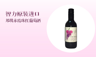 长白山野生蓝莓酒红酒