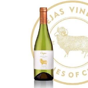 智利原瓶进口金羊长相思经典干白葡萄酒750ml