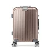 丹爵(DANJUE)20寸铝框拉杆箱男女通用行李箱 万向轮旅行箱 D23