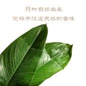 有米清香裹蒸皇(4只礼盒装)