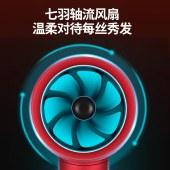 海牌(HAIPAI)负离子电吹风恒温吹风机吹风筒HP-D80