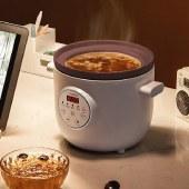 九阳电炖锅紫砂锅保温1.5升家用多功能煲汤沙锅DGD1505AM