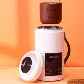 山水多功能壶便携式烧水壶多功能全自动600ml迷你养生壶电热水壶(标准款)SKS-41
