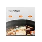 九阳电压力锅家用压力煲多功能一锅双胆开盖预约定时电高压锅Y-50C29