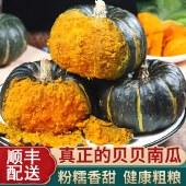 贝贝南瓜4.8-5斤 小南瓜粉糯香甜 养生蔬菜健康宝宝辅食 顺丰包邮