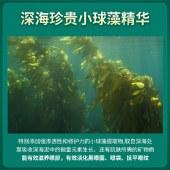 德德维芙海藻眼膜贴60片淡化黑眼圈细纹眼袋紧致淡皱消补水保湿男女