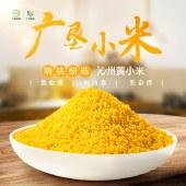 广垦小米(沁州黄)400g